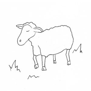 Oveja leche de oveja