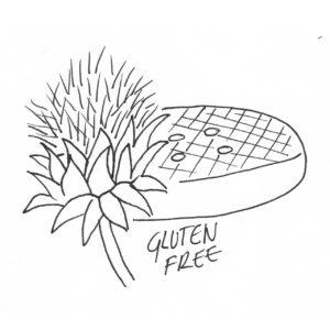 cuajo vegetal flor de cardo vegetariano