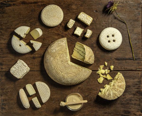 quesos artesanos de oveja bonitos para regalar