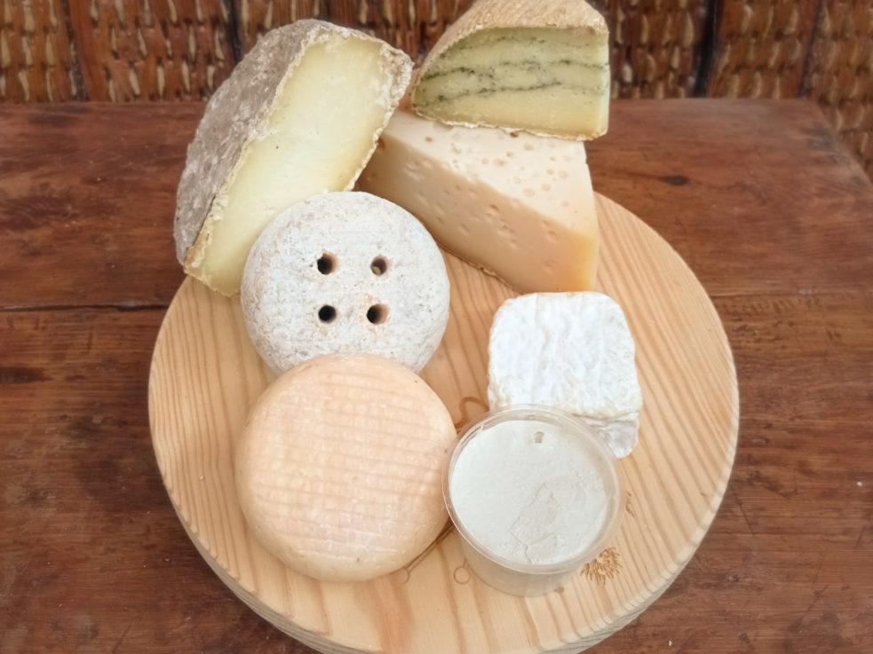 Lote de quesos artesanos de Madrid pastas duras y blandas de oveja