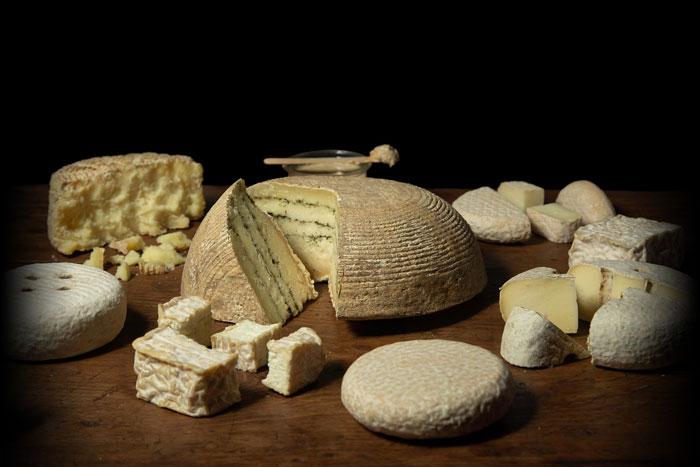quesos artesanos de oveja cuajo vegetal Madrid QJaramera