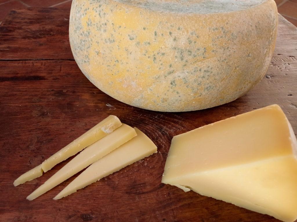 queso con agujeros tipo enmental oveja